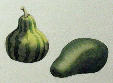 Watercolour studies by Barry Coombs - FallTuesWk4