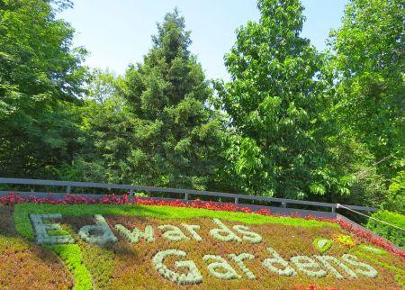 Edward's Gardens - PleinAirTO2014