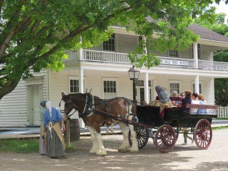 Horse and Wagon - PleinAirTO2014