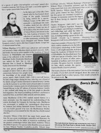 Wood Duck, December 2016, P. 94