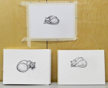 Pen and Ink Studio Critique