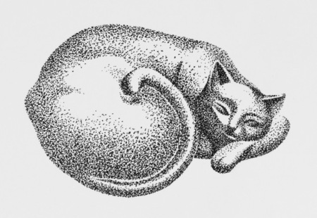Stippling demonstration by Barry Coombs
